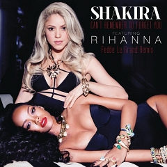 Can't Remember To Forget You(Feat. Rihanna)